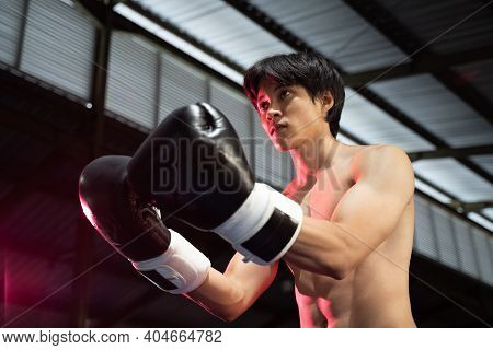 Boxer Fighter In Boxing Gloves Challenge His Opponent With Hand Gesture