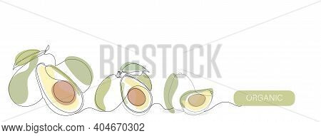 Avocado Vector Color Illustration, Background, Banner For Label Design. One Continuous Line Drawing