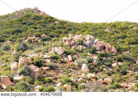 Chaparral Plants Surrounding Large Rocks And Boulders On An Arid Hillside Taken On Rural Badlands At
