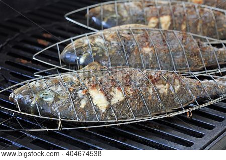 Fresh Sea Bass On Barbecue Grill In Germany