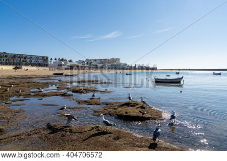 View Of La Caleta Beach In Cadiz With Wooden Fishing Boats Stranded At Low Tide