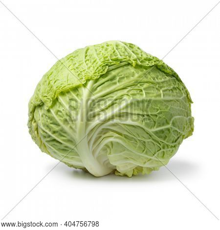 Single fresh raw whole Savoy cabbage isolated on white background