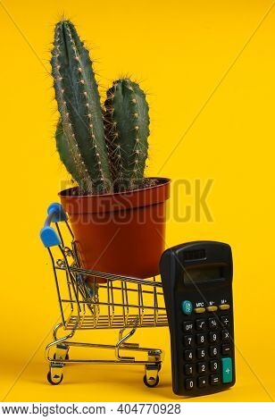 Shopping Concept. Cactus In Supermarket Trolley With Calculator On Yellow Studio Background. Minimal