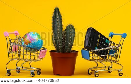 Global Shopping Concept. Back To School. Cactus In Pot And Supermarket Trolley With Globe, Calculato