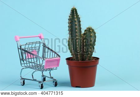 Shopping Concept. Cactus In Pot And Supermarket Trolley On Blue Studio Background. Minimalism