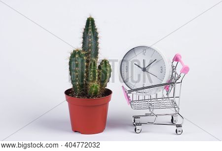 Shopping Time. Supermarket Trolley With Clock And Cactus On White Background