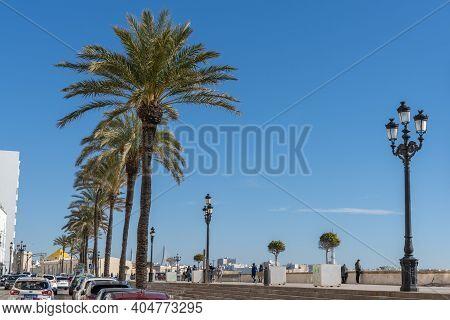 View Of The Avenida Campo Del Sur And Promenade In Downtown Cadiz