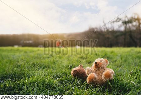Lost Two Teddy Bear With Sad Face Lying On Grass Fields With Blurry People Walking,couple Poor Bear