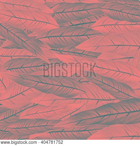 Solid Pink Eucalyptus Leaves Pattern - Crimson, Red And Pink Leaves In Pattern