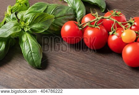 Green Basil And Cherry Tomatoes Close-up.food Background With Herbs And Tomatoes