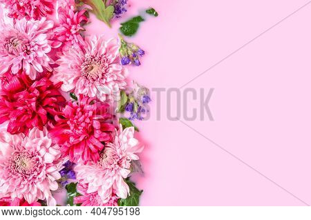 Tender Floral Background With Chrysanthemum Or Mums Flowers Floating In Pink Milk Water Bath, Left S