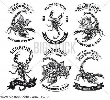 Wild Scorpion Monochrome Tattoos And Round Labels Vector Illustration Set. Vintage Arachnid With Poi