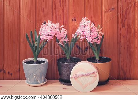 Three Pink Hyacinth Flowers And Gift Box With Pattern In Shape Of Heart On Wooden Table.