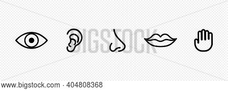 Five Human Senses Icon Set. Eye, Nose, Ear, Hand, Mouth With Tongue Sign. Sight, Smell, Hearing Touc