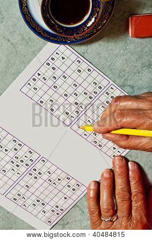Grandma with Sudoku Game