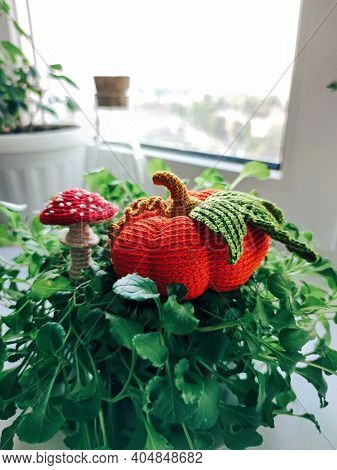 Pumpkin Mushroom Fly Agaric Amanita Plant Knitting Crochet Yarn Thread Hook Craft Creative Closeup M