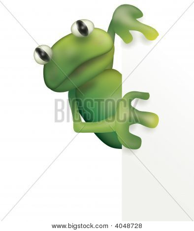 frog and empty board - illustration; isolated on white poster