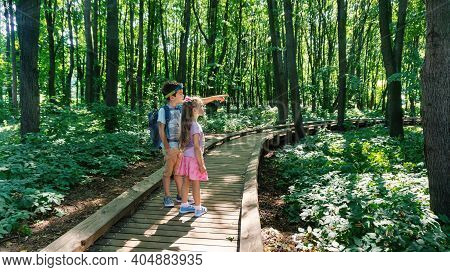 Children, Young Tourists Travel Along A Well-equipped Hiking Trail In The Forest Of The Reserve. Fam