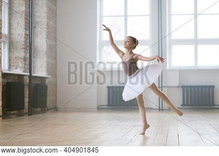 Little ballet dancer in beautiful tutu dress learning the ballet dance in dance studio