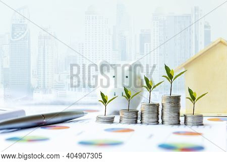 Piggy And The Tree  Growing On Money Coin Stack For Investment And Saving With Financial Report Of I