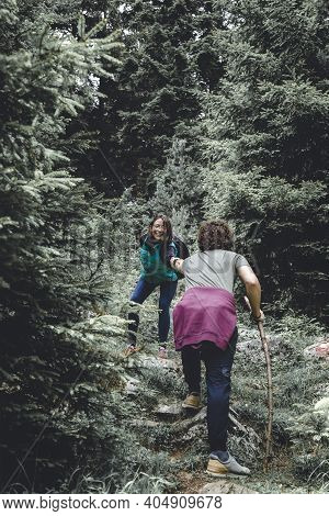 Couple Mountaineering Through An Evergreen Forest, Relaxing While Spending Leisure Time In Nature On