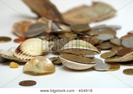 Coins And Shells