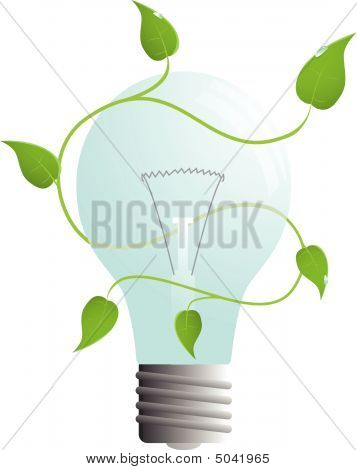 isolated vector bulb with green leaves
