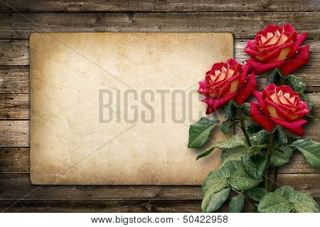 Card For Invitation Or Congratulation With Red Rose