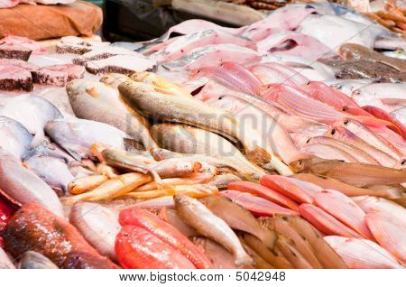 fresh fish at a fish market - food background poster
