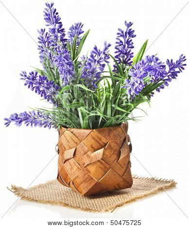 basket with lavender flowers bouquet  isolated over white background