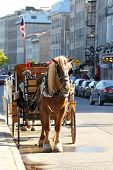 Carriage in a street in old port in Montreal city poster
