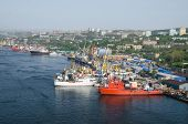 port Vladivostok panorama of container terminal Russia ships and railway Zolotoy Rog bay poster