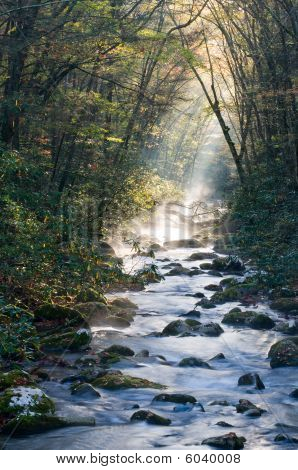 Smoky Mountains River On Cold Morning