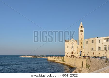 Cathedral Of Trani - Apulia (south Italy)