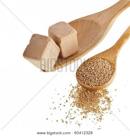 Fresh and dry yeast in wooden spoon isolated on white background