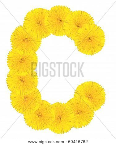 Letter C Made From Dandelions