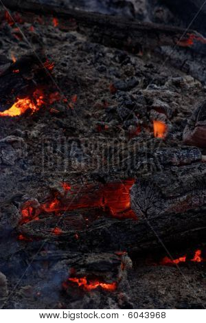 Ashes and live coals
