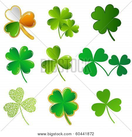 vector shamrock collection