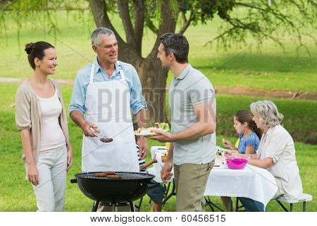 View of an extended family with barbecue in the park