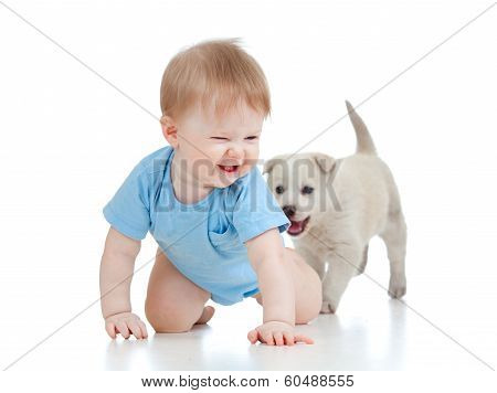 cute baby playing and crawling away a puppy
