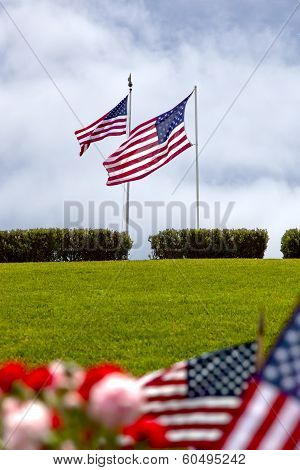 American Flags At United States National Cemetery