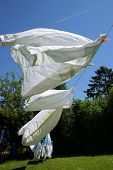 White laundry drying on a hot and windy summer day poster