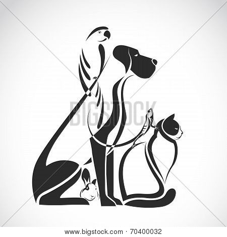 Vector Group Of Pets - Dog, Cat, Bird, Reptile, Rabbit,