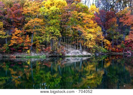 Autum Tree Reflections