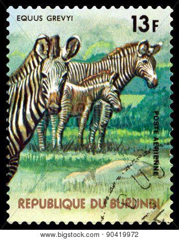 Vintage  Postage Stamp. Grevy's Zebra. Animals Burundi.