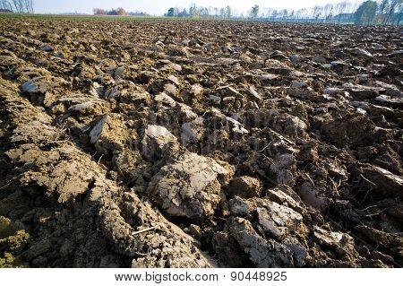 the freshly picked field of a farmer. fieldwork in the fall
