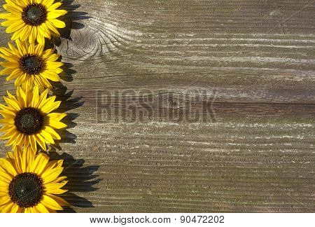 Board With Sunflowers Concept