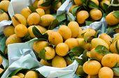 Pile plum Mango in local market thailand poster