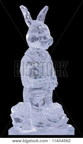 Ice Hare