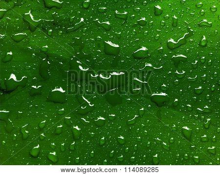 few water drops on green metallic surface